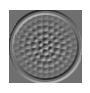 Enerfocus - Variedade de Cores